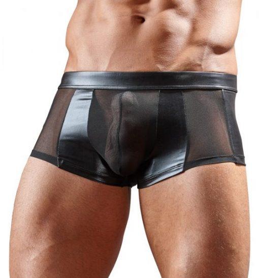 Powernet/wetlook Pants